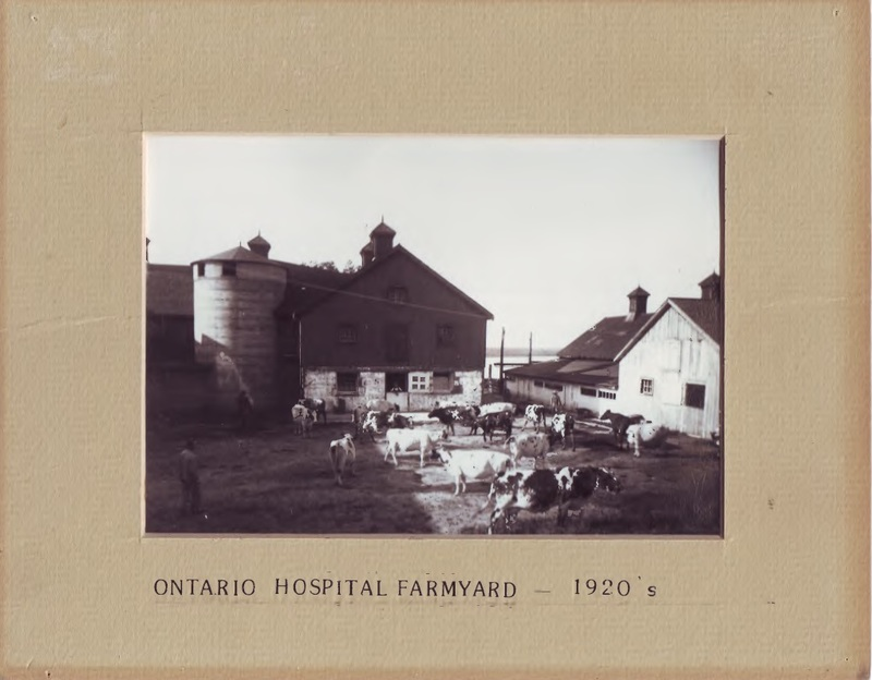Ontario Hospital Farm