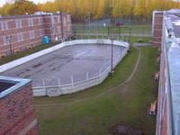 yard1.jpg